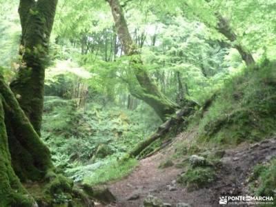 Descenso Sella_Sierra del Sueve; charca verde pedriza rutas a pie por madrid viajes en grupo organiz